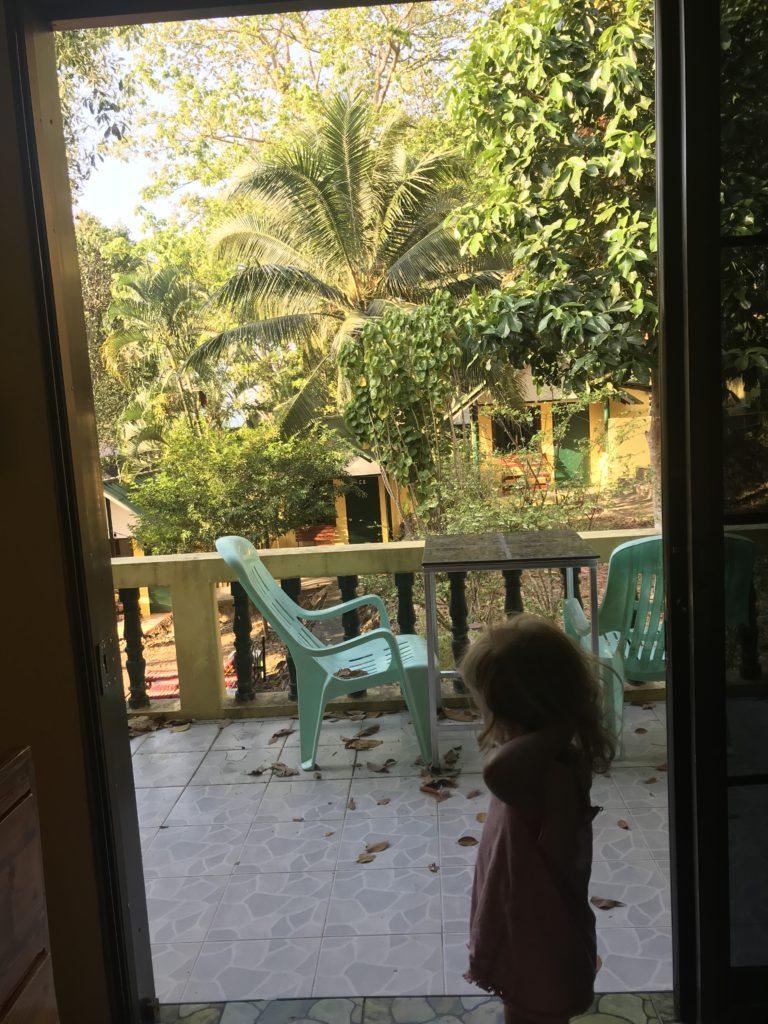 Guten Morgen Insel